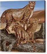 Cheetah Family Tree Canvas Print