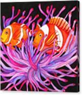 Clownfish And Sea Anenome  Canvas Print