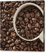 Coffee Beans Canvas Print