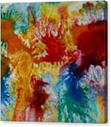 Color Abstracts Canvas Print