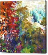 Colorful Autumn Trees In Forest Canvas Print
