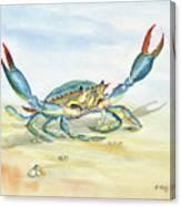 Colorful Blue Crab Canvas Print