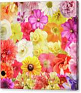 Colorful Floral Background Canvas Print