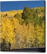 Colors Of Colorado #2 Canvas Print