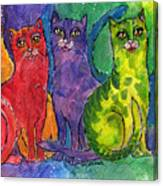 Colourful Cats Canvas Print