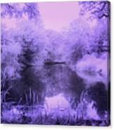 Conishead Lake Canvas Print