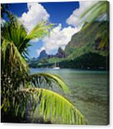 Cooks Bay With Sailboat Canvas Print