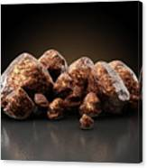 Copper Nugget Collection Canvas Print