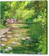 Coromandel Creek Canvas Print