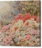 Cottage Garden Canvas Print