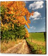 Country Road And Autumn Landscape Canvas Print