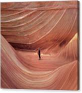 Coyote Buttes North Canvas Print