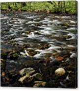 Creek, Smoky Mountains, Tennessee Canvas Print