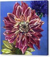 Dahlia's Desire Canvas Print