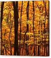 Delicious Autumn Canvas Print