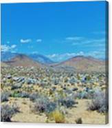 Desert Comfort Canvas Print