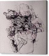 Dibujo Canvas Print