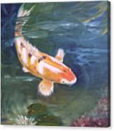 Doitsu Koi Canvas Print