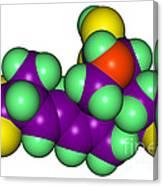 Domoic Acid Molecular Model Canvas Print