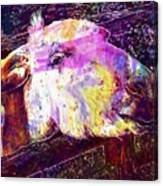 Donkey Livestock Beast Of Burden  Canvas Print