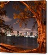 Downtown Miami Canvas Print