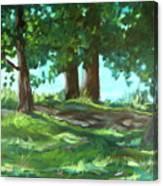Dreaming On Fellows Lake Canvas Print