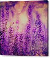 Dreamy Summer Canvas Print