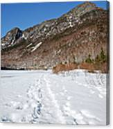 Eagle Cliff  - White Mountains New Hampshire Usa Canvas Print