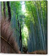 Earth Moments Gallery I Canvas Print