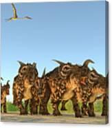 Einiosaurus Dinosaurs Canvas Print