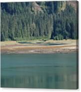 Endicott Glacier Area  Canvas Print