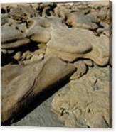 Eroded Beach Rocks. Canvas Print