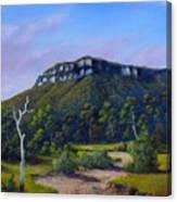 Escarpment Road Canvas Print