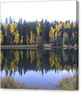 Potty Pond Reflection - Fall Colors Divide Co Canvas Print