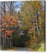 Fall Lane Canvas Print