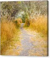Fall Pathway 3 Canvas Print
