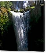Falls Creek Falls Canvas Print