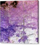 Fantasy Woods Canvas Print