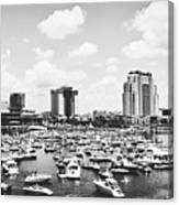 Festive Tampa Bay Canvas Print