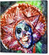 Fiesta Sombrero  Canvas Print