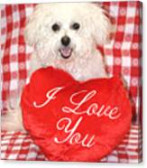Fifi Loves You Canvas Print