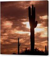 Film Homage Orson Welles Saguaro Cacti The Other Side Of The Wind Carefree Arizona 2004 Canvas Print