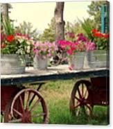 Flower Wagon Canvas Print