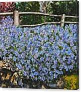 Flowers On The Rock Wall Canvas Print