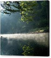 Fog And Reflection On Stream Canvas Print