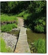 Footbridge Over A Creek Canvas Print