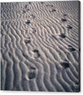 Footprints Canvas Print