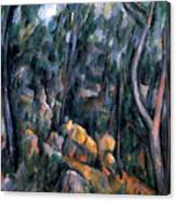 Forest In The Caves Above The Chateau Noir Canvas Print