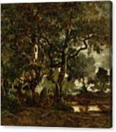 Forest Of Fontainebleau Canvas Print