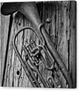 Forgotten Tuba Canvas Print